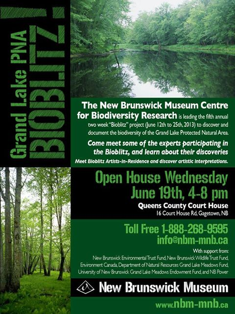 Bioblitz Open House, Wednesday 19 June, 4-8pm, Queens County Court House, Gagetown, New Brunswick